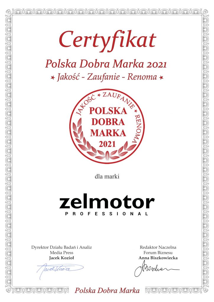 Zelmotor PLDM 2021